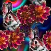 kanin och stora blommor