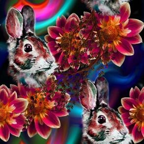 kanin och stora blommor - kanin och stora blommor