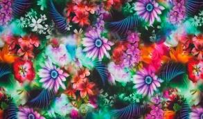 Blomster - Blomster