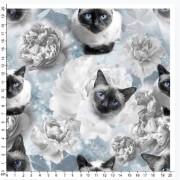 Katt och blommor