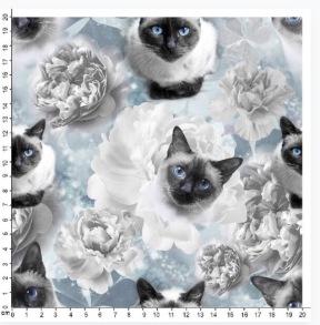 Katt och blommor - Katt och blomma
