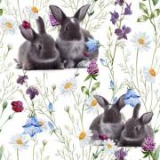 Ängsblommor med kaniner