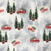 Julgranar och bil