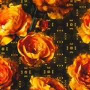 Botein Camellia