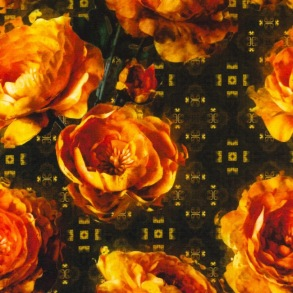 Botein Camellia - Botein Camellia
