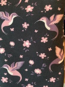 Stuvbit kolibri - Stuvbit kolibri