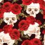SCULLS finns i två färger - Skulls svart röda rosor