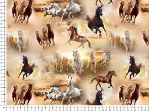 Horses. - Horses.