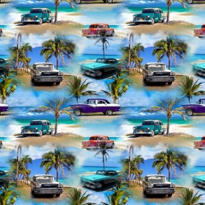 Cars on the beach - Cars on the beach