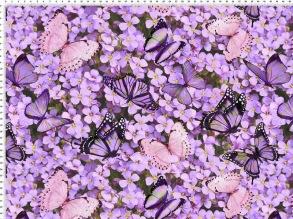 lila blommor och fjärilar - lila blommor och fjärilar