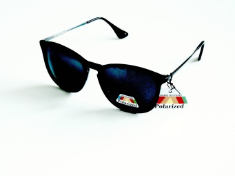 Polariserande solglas Dina svarta