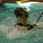 Första gången i poolen