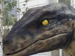 hyra dinosaurie