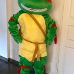 turtle maskot