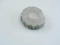 Älghorn 10mm