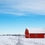 winter-barn-556696