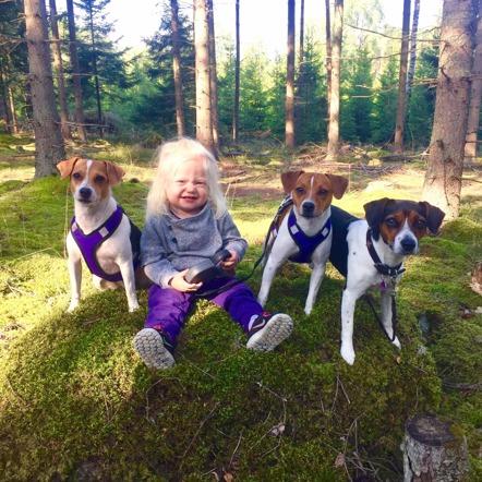 Jolie och hundarna 11/9-2016