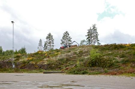8 augusti 2016 - Den avverkade skogen transporteras bort.