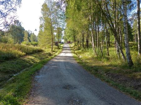 Den idylliska vägen till Hytta.
