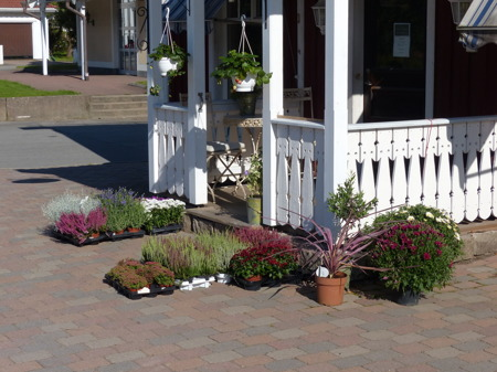 L&P Blommor har dukat fram höstens dekorationer.