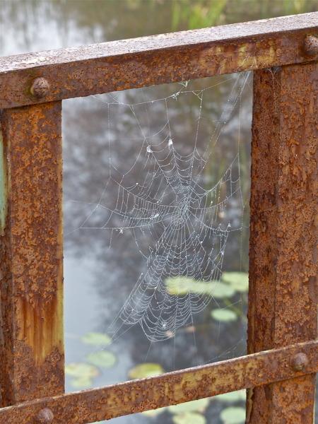 Sliten spindelväg på ett slitet broräcke.