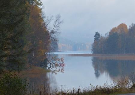 Hösten har lagt sin hand över Torsviken och sjön Töck.