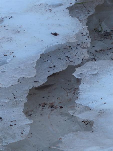 Lokal glaciär.