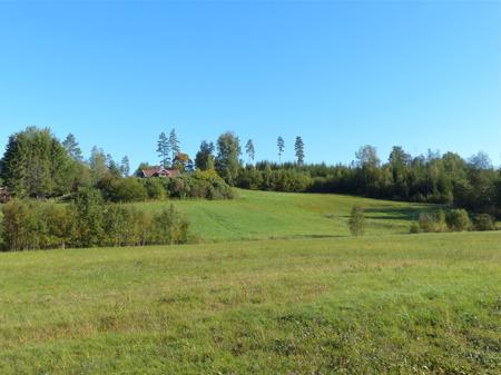 Här på Kallnäset skulle det byggas nya hyres-lägenheter, undrar om det kommer att ske ?