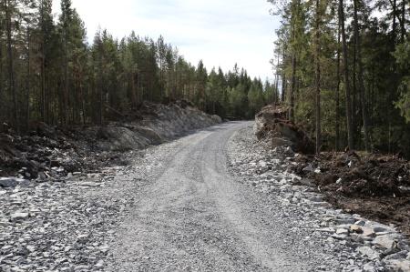 6 augusti 2018 - Anläggningsvägen mot Högås.