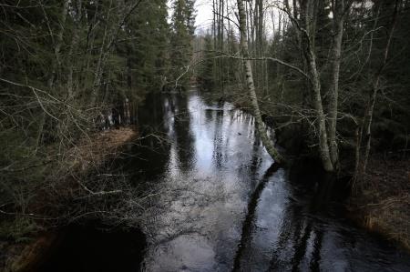 . . . och vidare ut i sjön Töck.
