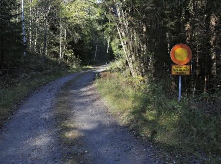 """Den aktuella vägsträckan börjar vid Leken i Hån med en rak uppförsbacke, den s k """"Lekshalla"""", upp till en platå där vägen planar ut."""