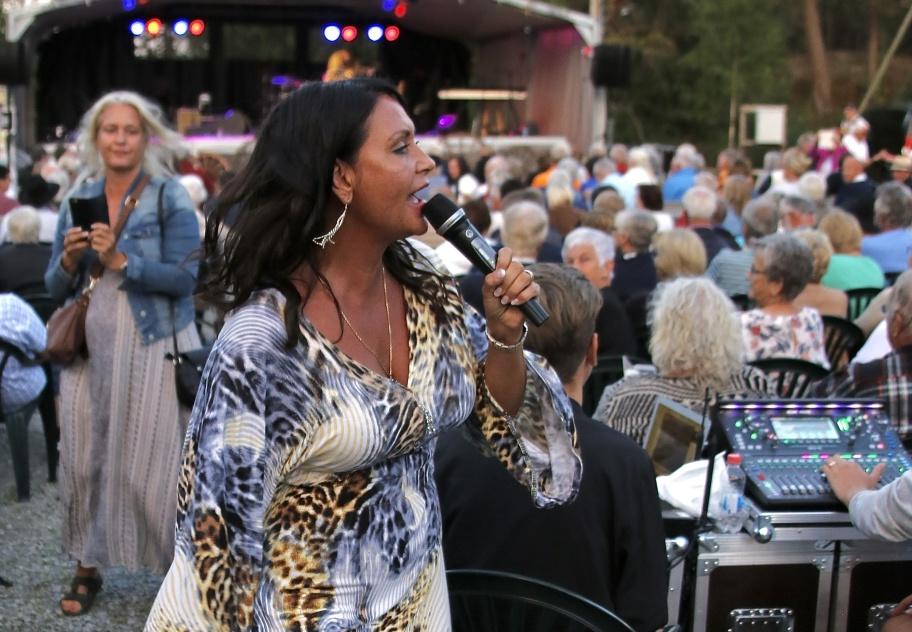 Kulturgruppen i Lennartsfors arrangerar varje sommar musikevenemang utomhus vid Strömsborg.