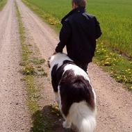 Linus och Amidelle promenerar