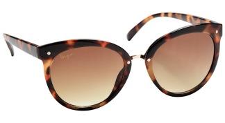 Solglasögon Paris - Brun