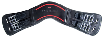 Karlslund anatomiska lädergjord