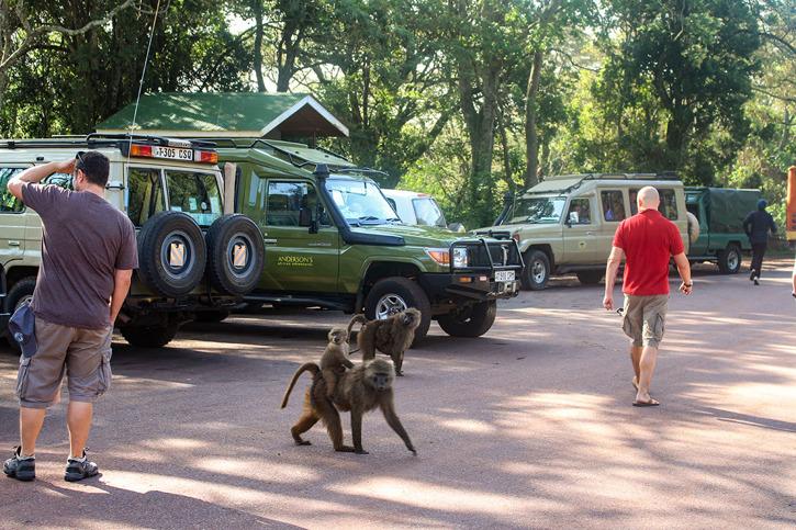 Gränsstationen till Ngorongoro