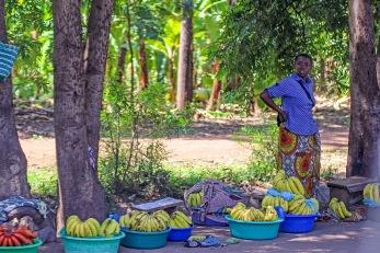 Fruktförsäljning vid vägkanten