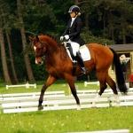 Florentino tävling Holland