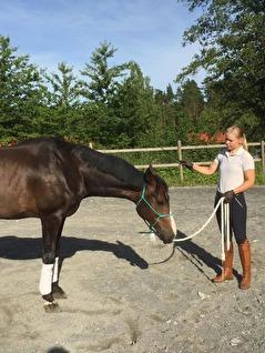 Sänkt huvud innebär en undergiven och avslappnad häst. Högt huvud utlöser mer adrenalin ut till kroppen och flyktinstinkten ligger närmre till hands.