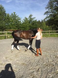 Flytta bakbenen för att jobba ut spänningar i kroppen på ett kontrollerat sätt.