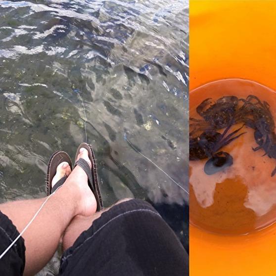 23 år senare (sommaren 2016) fiskar samma kille krabbor på nästan samma ställe, hos mormor & Bert i Berga. Han är nu också uppgraderad och kan sitta på bryggan i stället än för på land