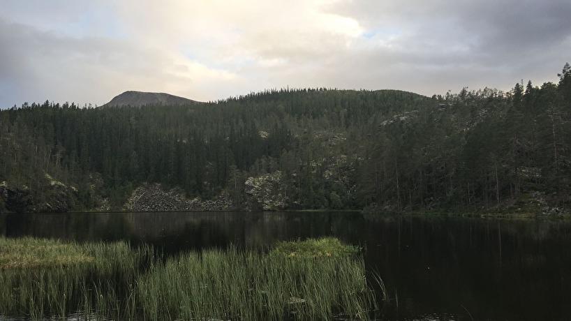 Brorsan laddar batterierna med fiske i härliga Härjedalen - Sonfjället. Lite kontraster, sommafestival  kontra vackra fjäll