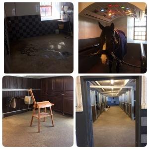 Träningshästar på väg in och snart är mitt stall fullt;)