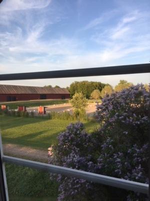 A Room with a View - Utsikten från mitt köksfönster:)