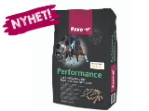 Pavo Performance - Pavo Performance