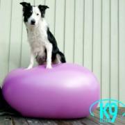 Eggboll 55 cm - K9-design