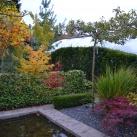 Huvudbild häckar och trädgårdstjänster