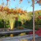 bild visningsträdgården minimalistiska trädgårdsrummet