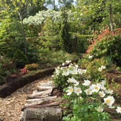stenåsa gardencenter varberg öppettider