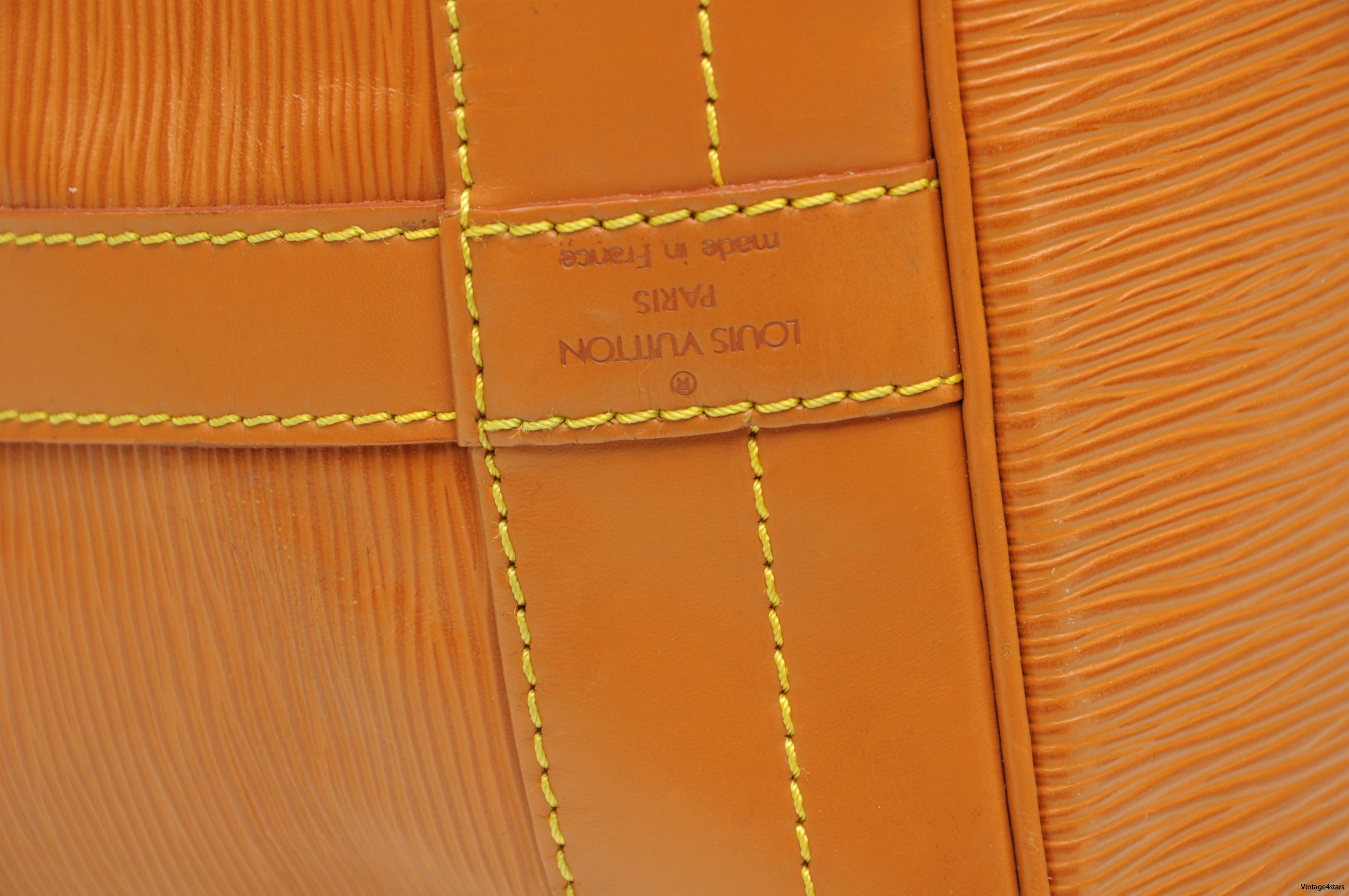 Louis Vuitton Noe  Epi Chipango 2